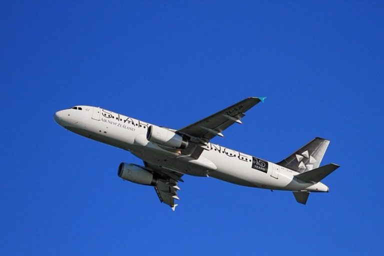 online travel consultant airliner